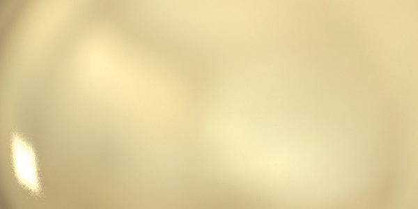 (image) aperçu de la finition champagne